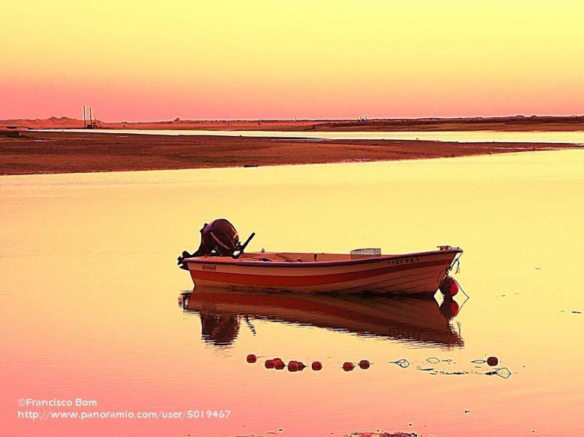 Sonhos numa noite de verão - Ria Formosa